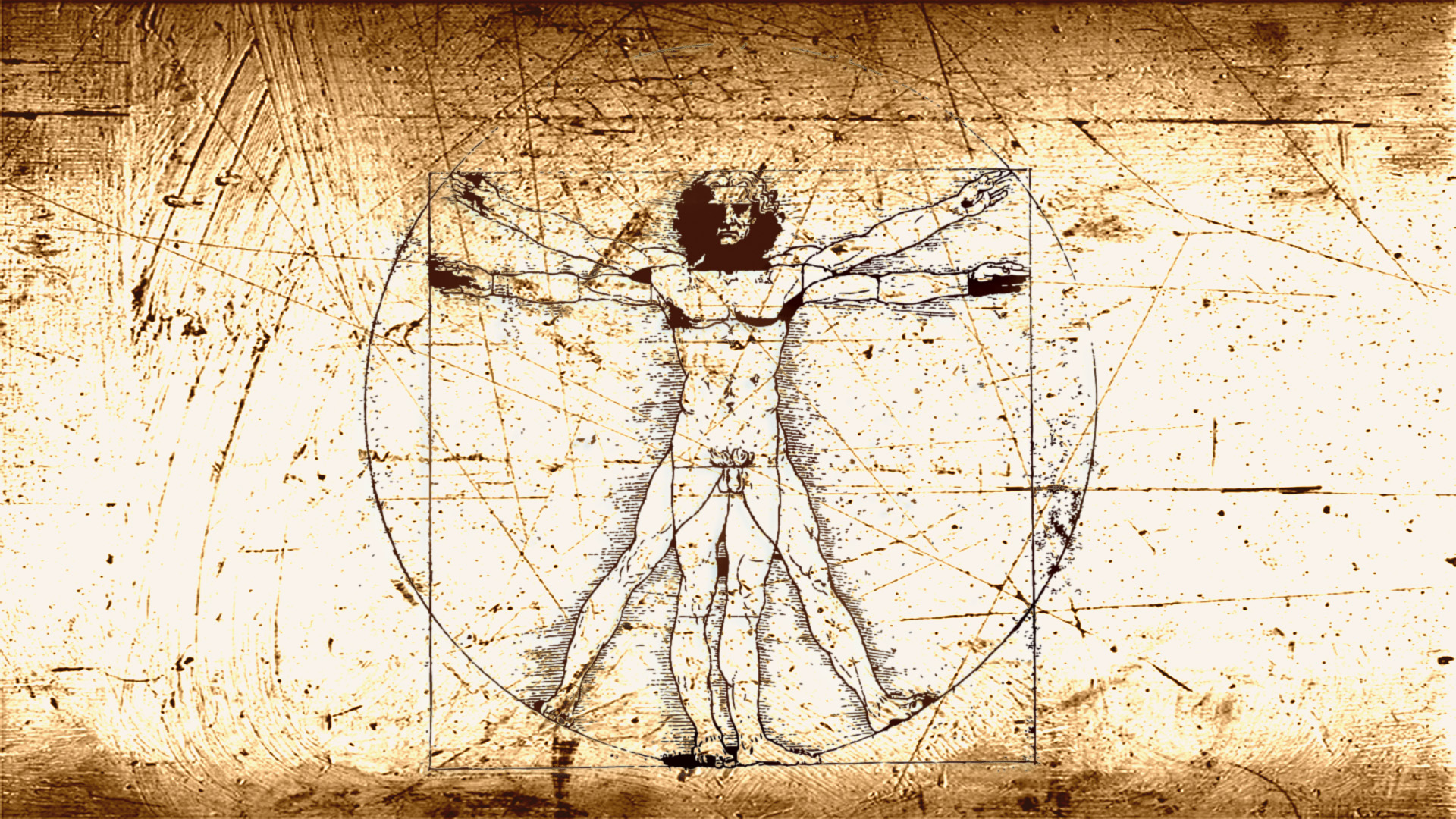 the vitruvian man View stock photo of vitruvian man find premium, high-resolution photos at getty images.