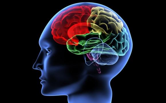 (Image/cognitivetherapysf.com)